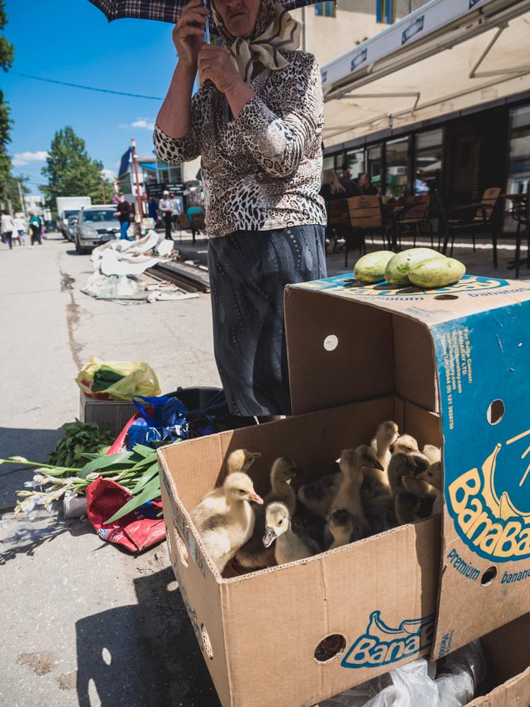 Auf dem Markt in Cahul