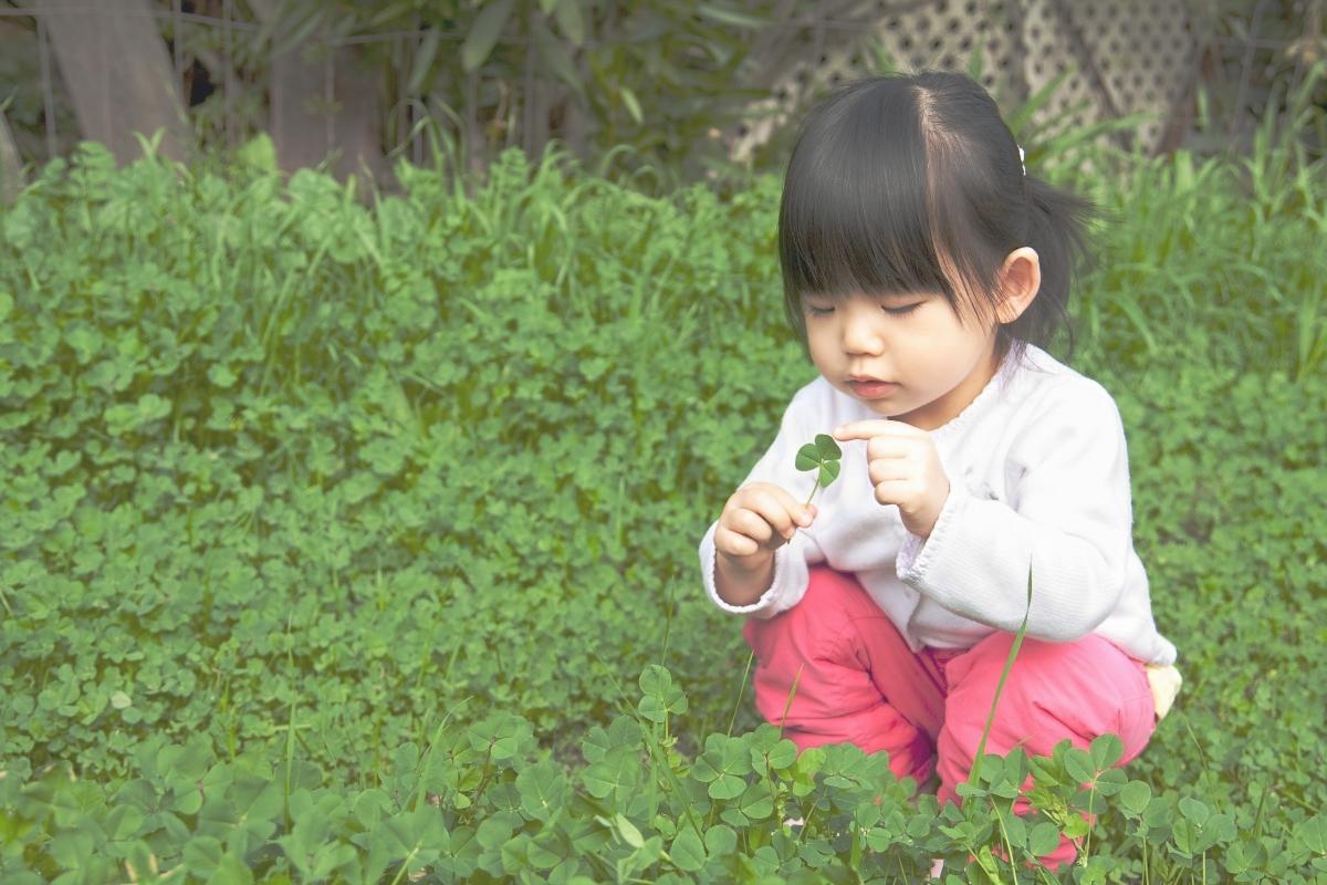 The Mindful Child >> Befa Raising The Mindful Child