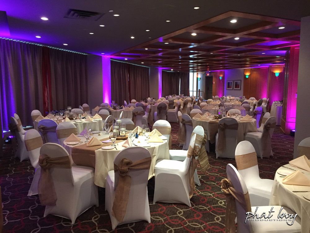 Rebecca__Joe_-_DJ_Decor__Specialty_Lighting_-2.jpg