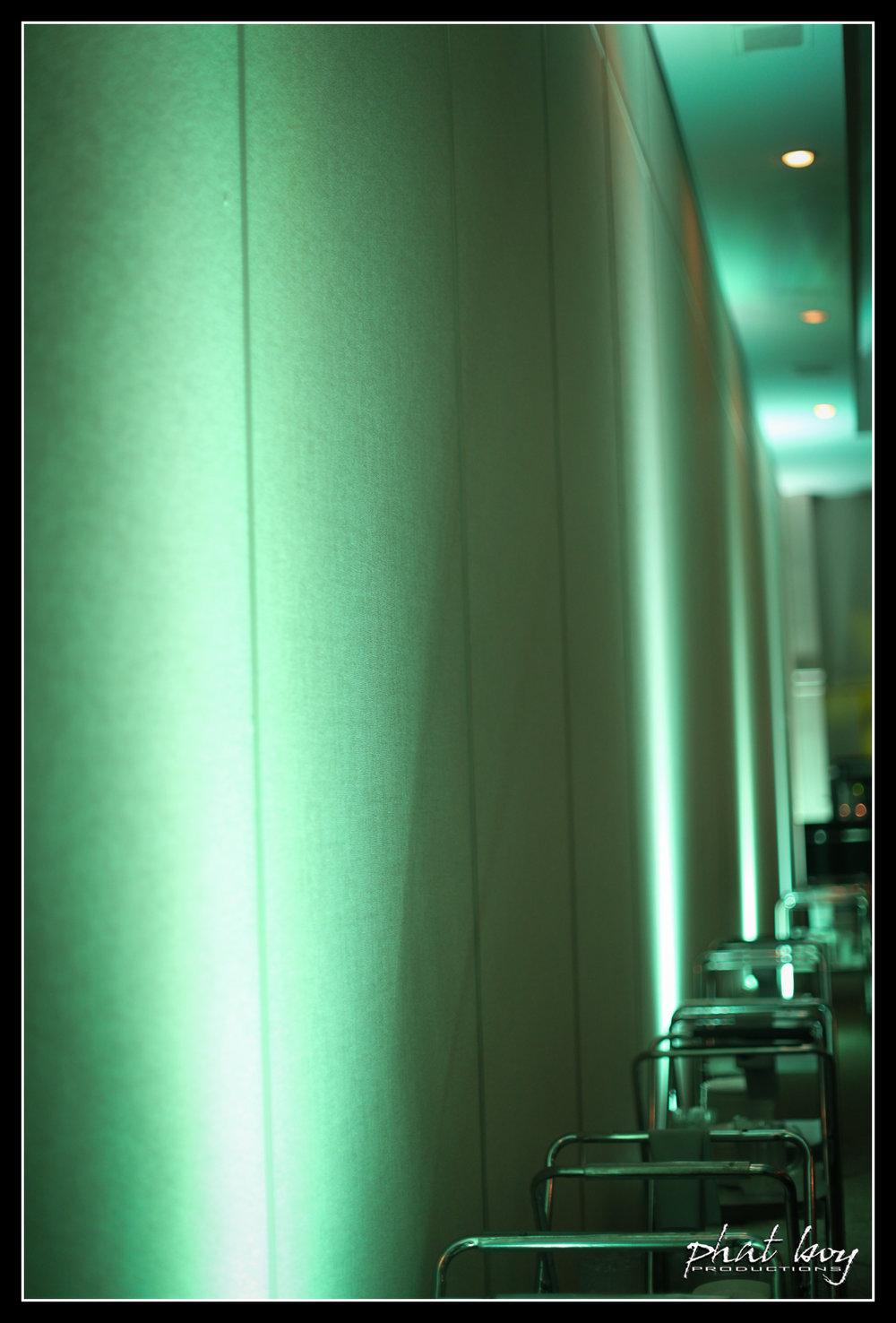 Zaldy & Amanda - Disc Jockey & Specialty Lighting - WEB-6.jpg