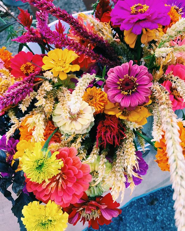 Only grow thoughts in your brain that you would put in a vase 🌻✨ #saltandsouljewelry #richmond #rva #farmersmarket #flowers