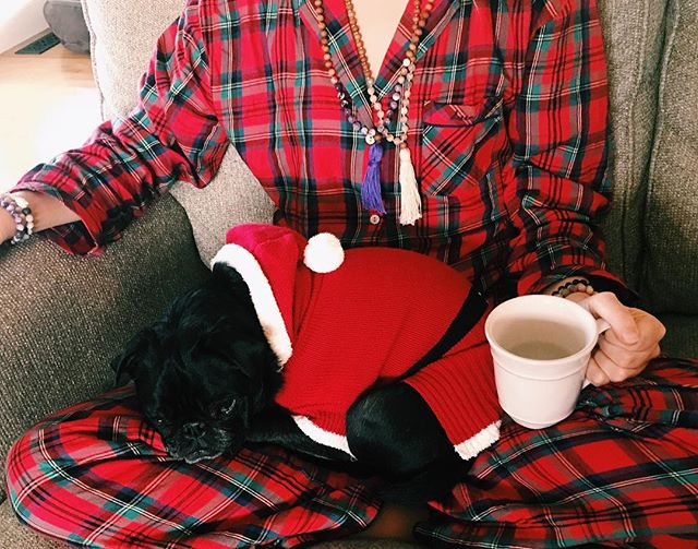 Wishing you a very Merry Christmas and happy holiday season full of cozy cups of tea and puppy snuggles 🌙✨