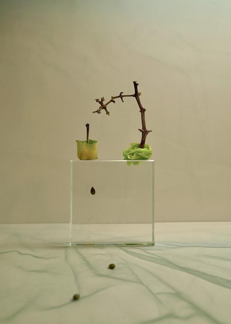 """Xuemeng Zhang, """"Zen Garden."""""""