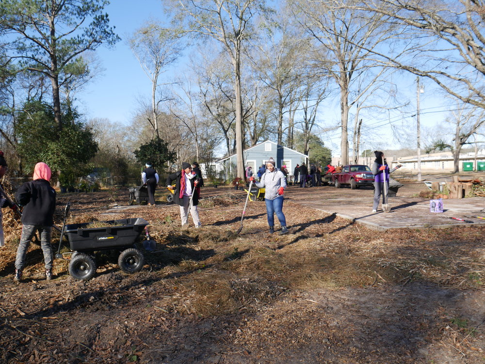 Volunteers on MLK Day helped begin the landscaping at Bottom Gardens, a new park owned by Rosemont Human Services across from Lake Elementary School in Jackson. The volunteers were organized through a Junior League of Jackson Connecting Communities Event.