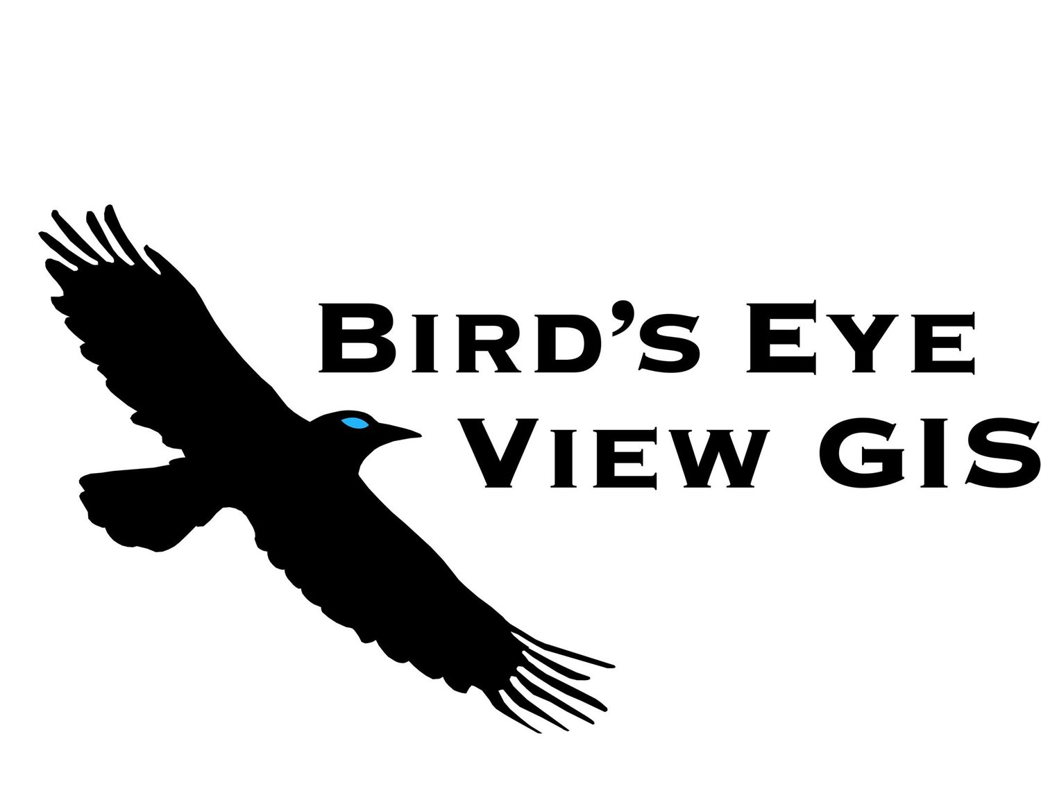 Workshop — Blog — Bird's Eye View GIS