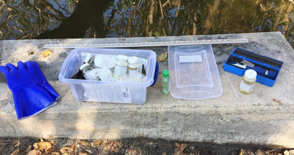 A King tide data collection kit