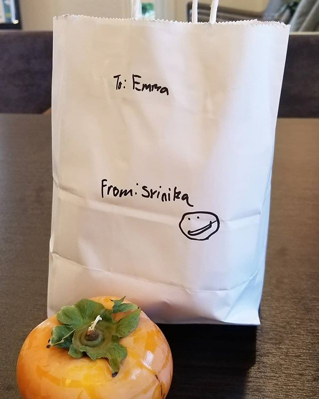 Today's an exciting day! I received home grown persimmons as a gift from my little buddy whose parents are purchasing a Cresleigh home, AND it marks 15,768,017 seconds since the grand opening weekend of Domain! That's six months!!! Our final release is almost here, stay tuned...