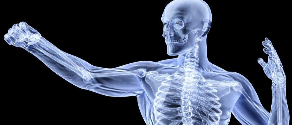 Health-Bones.jpg
