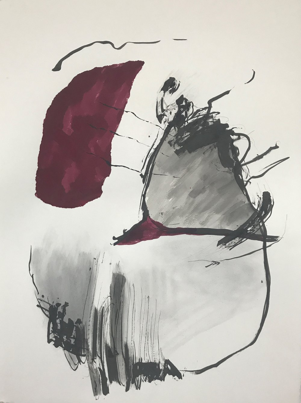 COCHINEAL DRAWING # 1