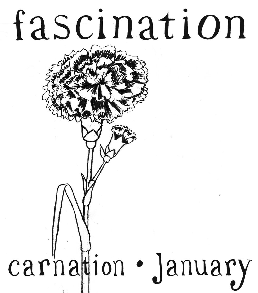 Final January Carnation with words.jpg