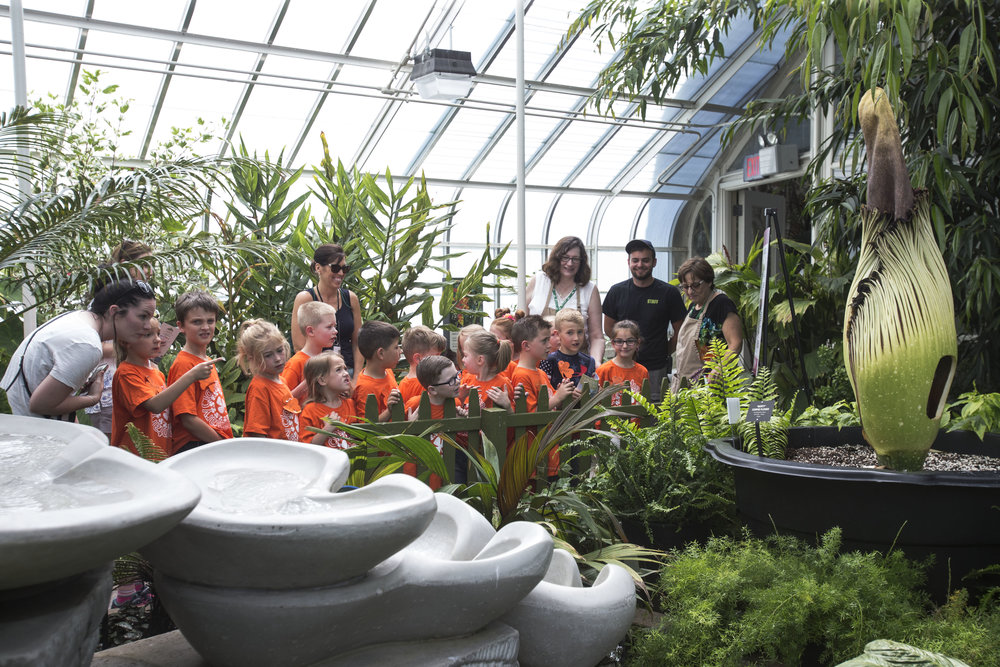 Teachers from Cloverbank Elementary School in Hamburg bring students from a first-grade class on a field trip.