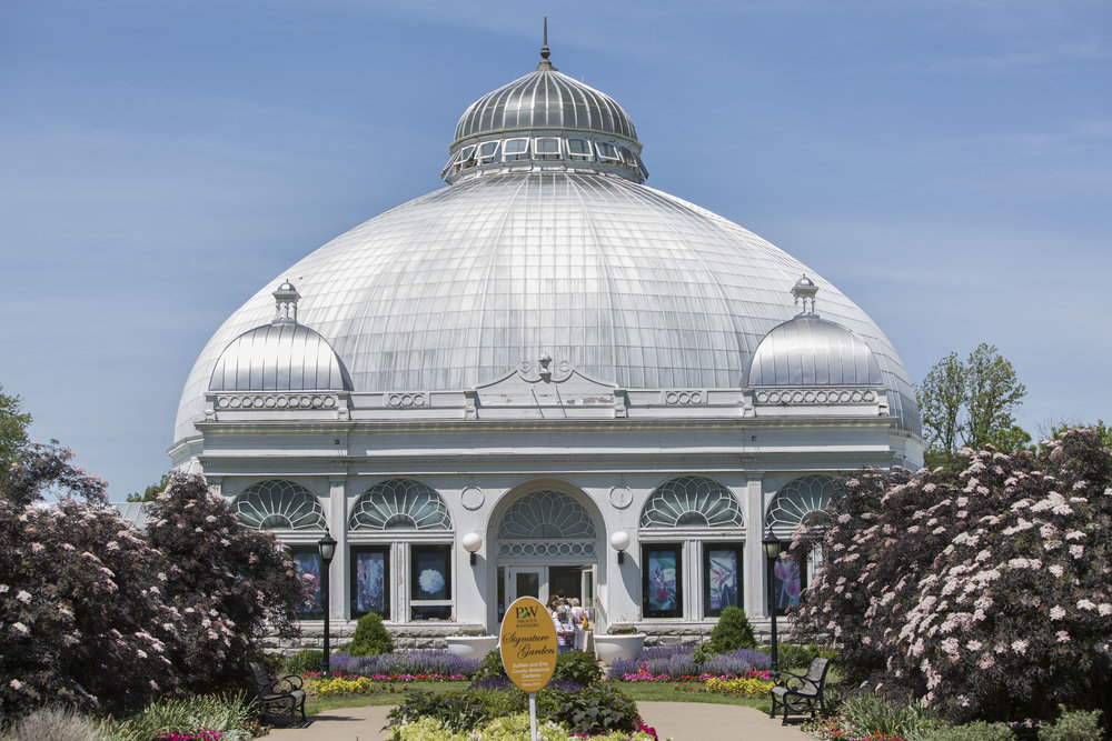 Big crowds have been flocking to the Buffalo and Erie County Botanical Gardens to see Morty.