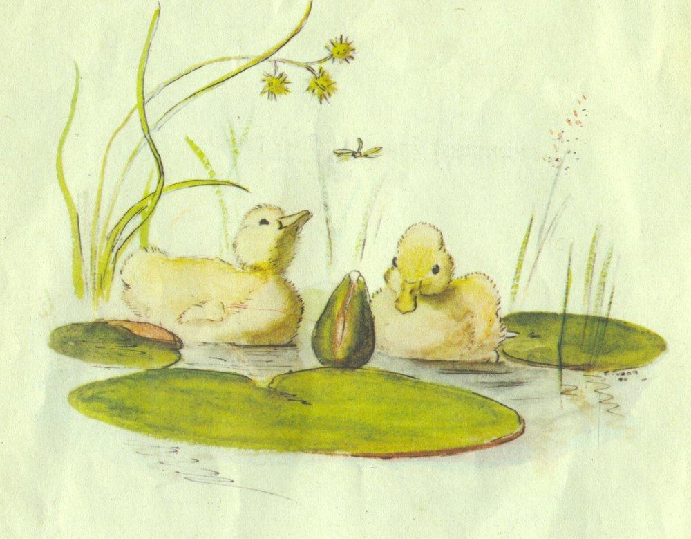 Ducklings illustration by Tasha Tudor