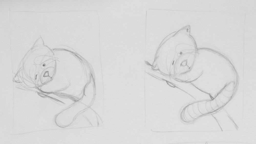 rough final sketch