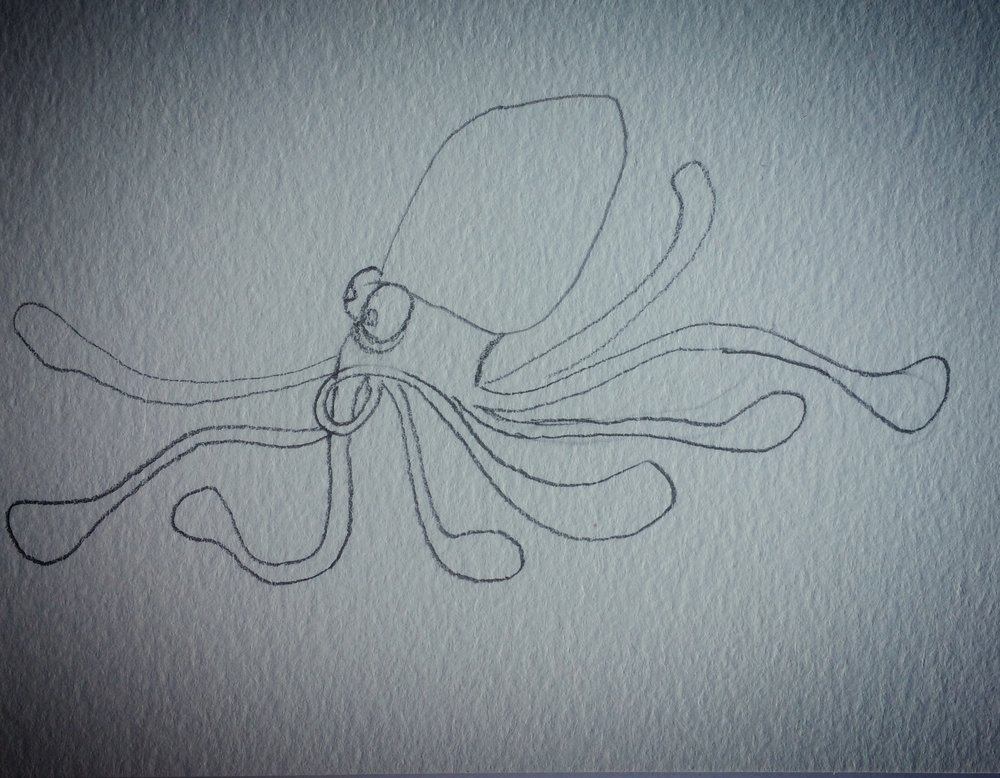 hurried squid