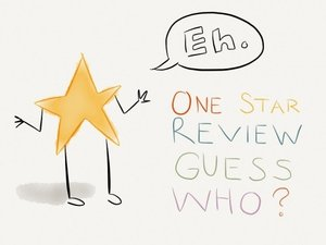 one star review.jpg