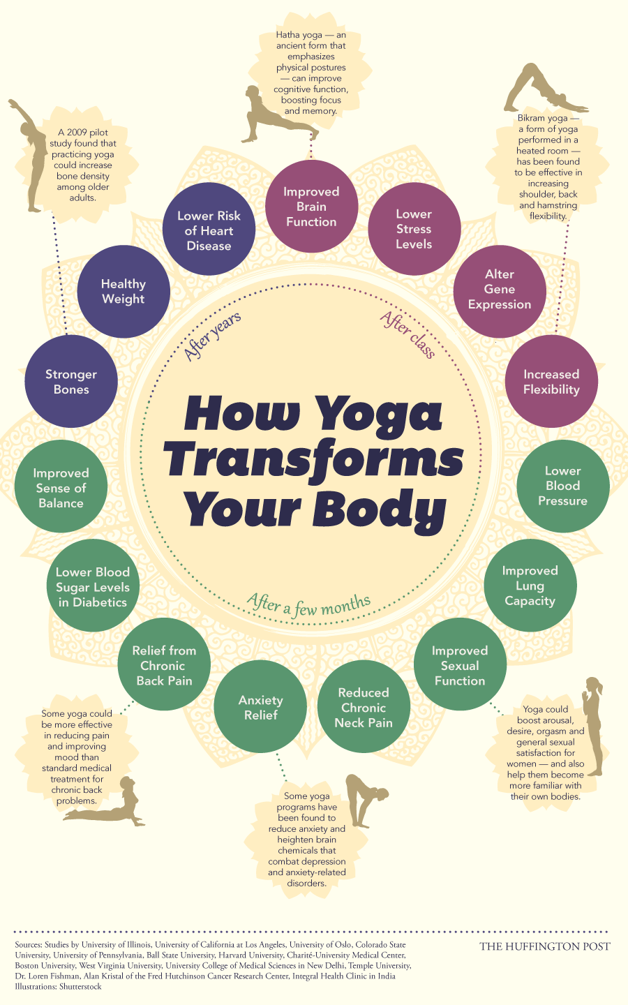 This is your body on yoga. Thanks to ______ for this great infographic.