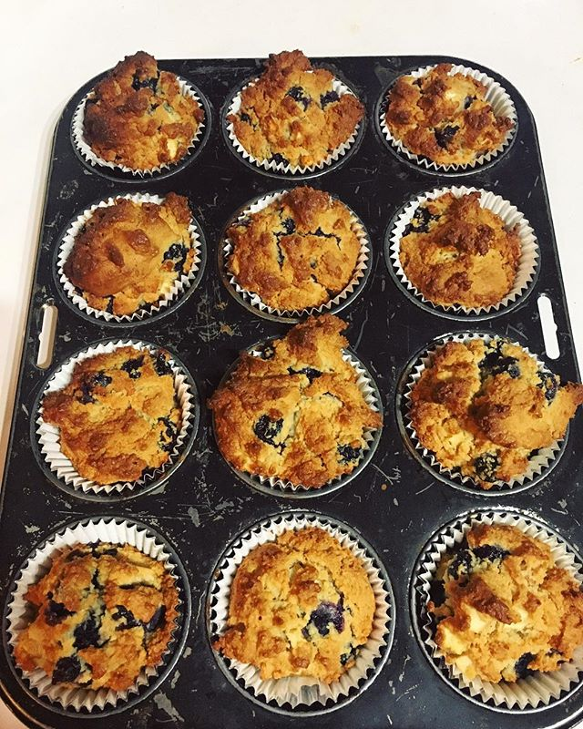 GF blueberry and apple muffins 🍎🙃 Recipe: - 300grams almond meal - 4 eggs - 2 tablespoons baking powder - 60ml melted coconut oil - 1 teaspoon cinnamon - 2 tablespoons of honey - 1 red apple chopped - 1 punned of fresh blueberries 1. Combine all the ingredients except apple as blueberries and mix well!  2. Gently fold in the chopped apple and blueberries  3. Divide into paper lined muffin tray 4. Bake at 170 degrees for 35-40 mins  #muffins #gf #glutenfree #recipe #food #healthyfoodshare #recipeshare #healthy #baking #blueberrymuffins #wellness #gfrecipes