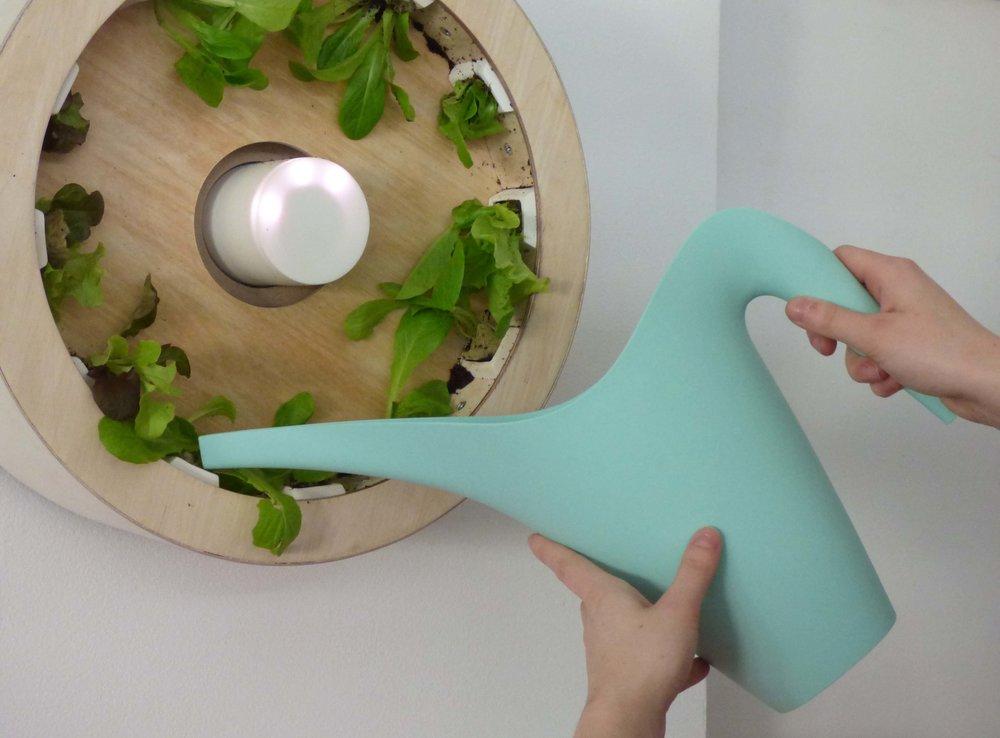 Eco Img 2.jpg