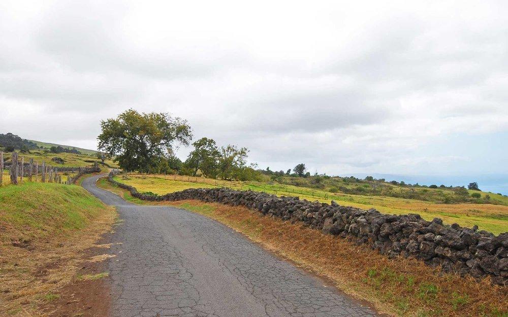 The Secret Side of Maui