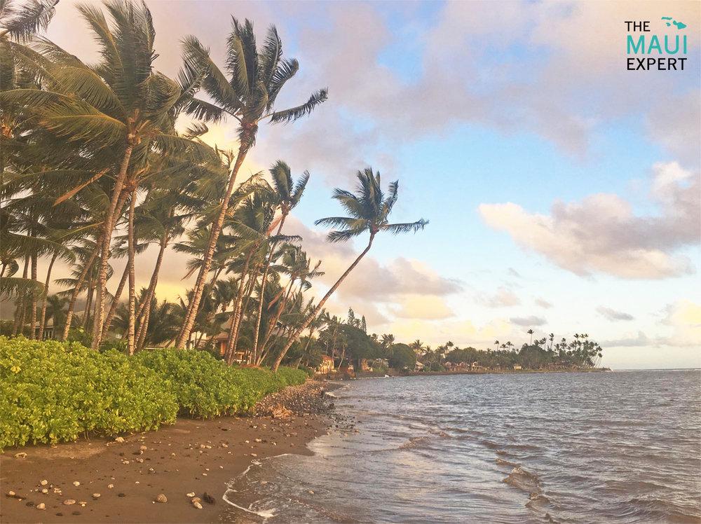 Kauaula Makila Beach Shark Pit Lahaina Maui