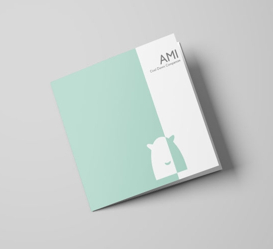 Box Insert Concept
