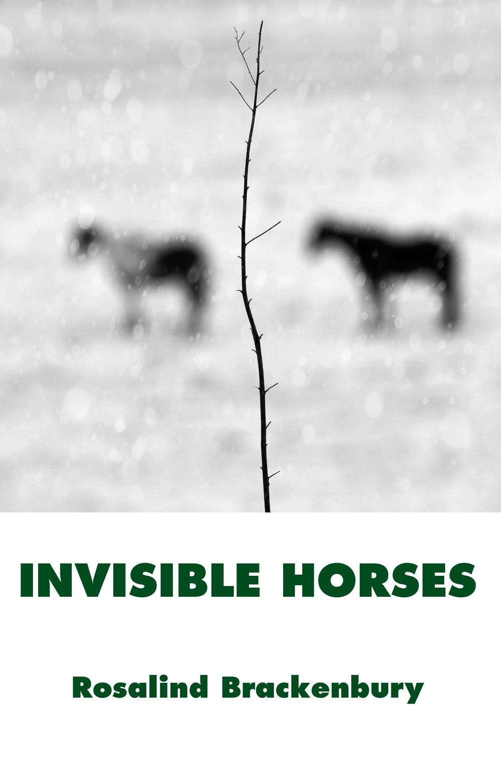 Invisible Horses Brackenbury Cover.jpg