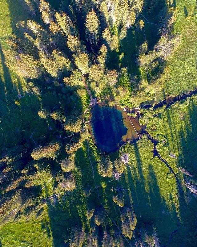 Small lakes on the mountain ⛰ 🔹 🔹 🔹 🔹 #mthoodmedia #mthood  #visualsoflife #northwestisbest #northwest #pnw #thatpnwlife #pnwcollective #pnwonderland #pnwdiscovered  #exlporeoregon #nw #adventurevisuals #nw #oregon #pacificcresttrail #pct #dji #kgw #kgwweather #nature
