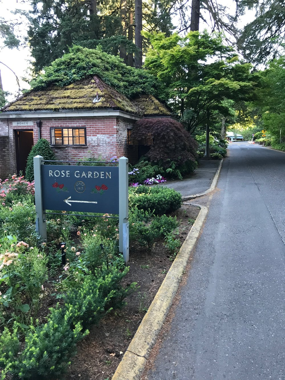 To celebrate our first official day in Portland, we visited the International Rose Test Garden. Keep scrolling to see all the beautiful pictures, and all the different kinds of roses.