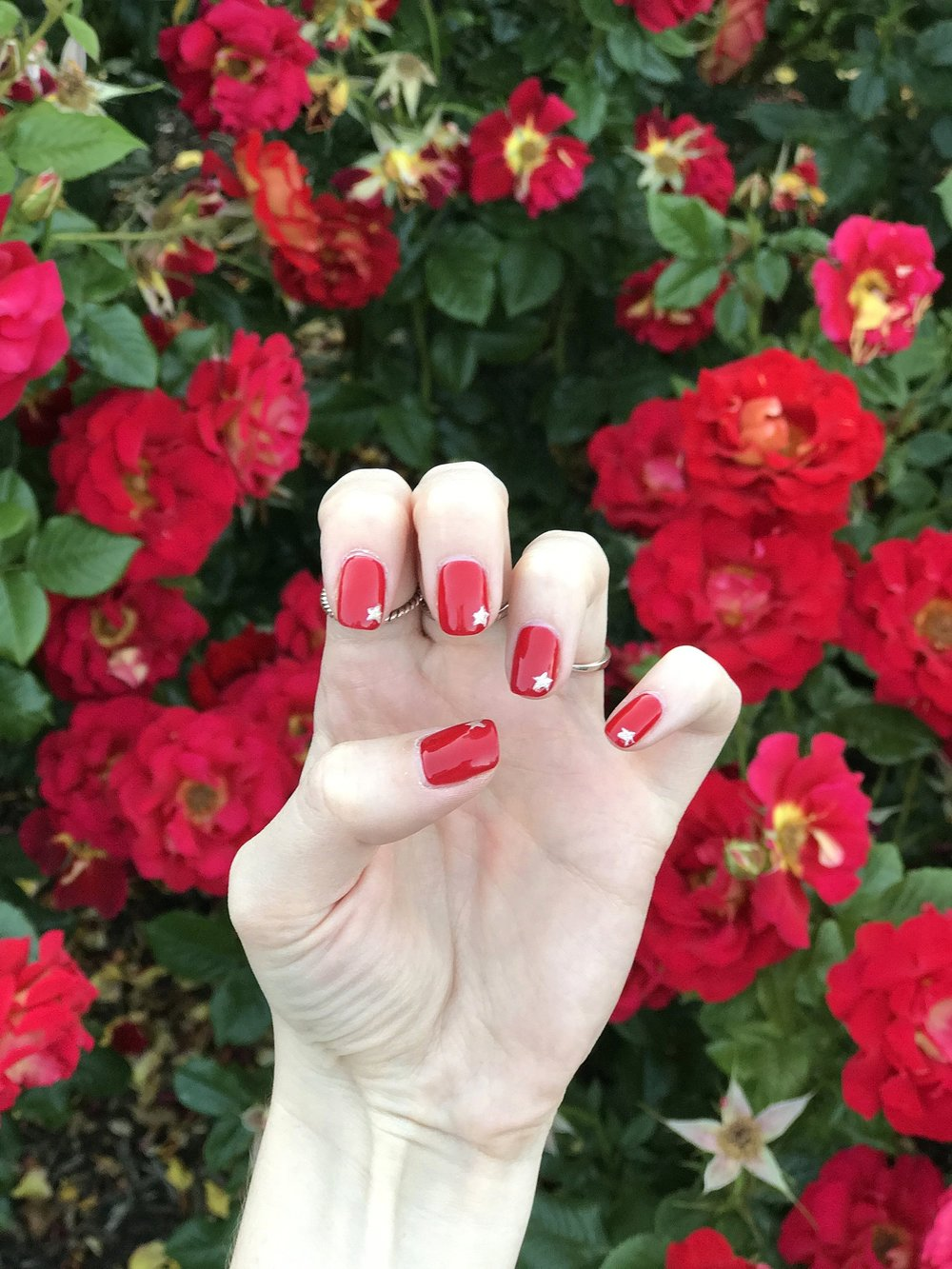 I loved my nails for the 4th, and they were inspired by Stephanie Gottlieb's nails.  She's my favorite fine jewelry designer. If you love getting your nails done, follow her.And if you love diamonds, definitely follow her!  Follow Stephanie and start getting inspired like I did,  here .