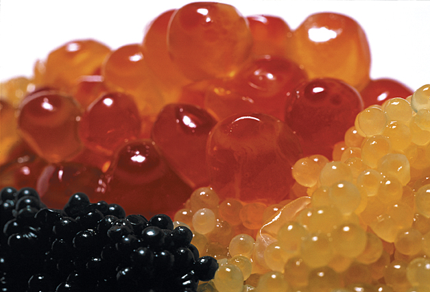 S0046550_Caviar.tif