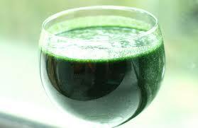 spirulina-drink.jpeg