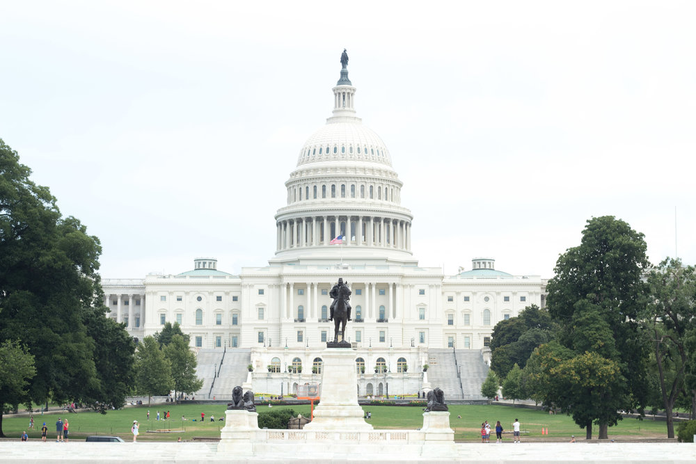 The United States Capital | Demure Fashion Blog