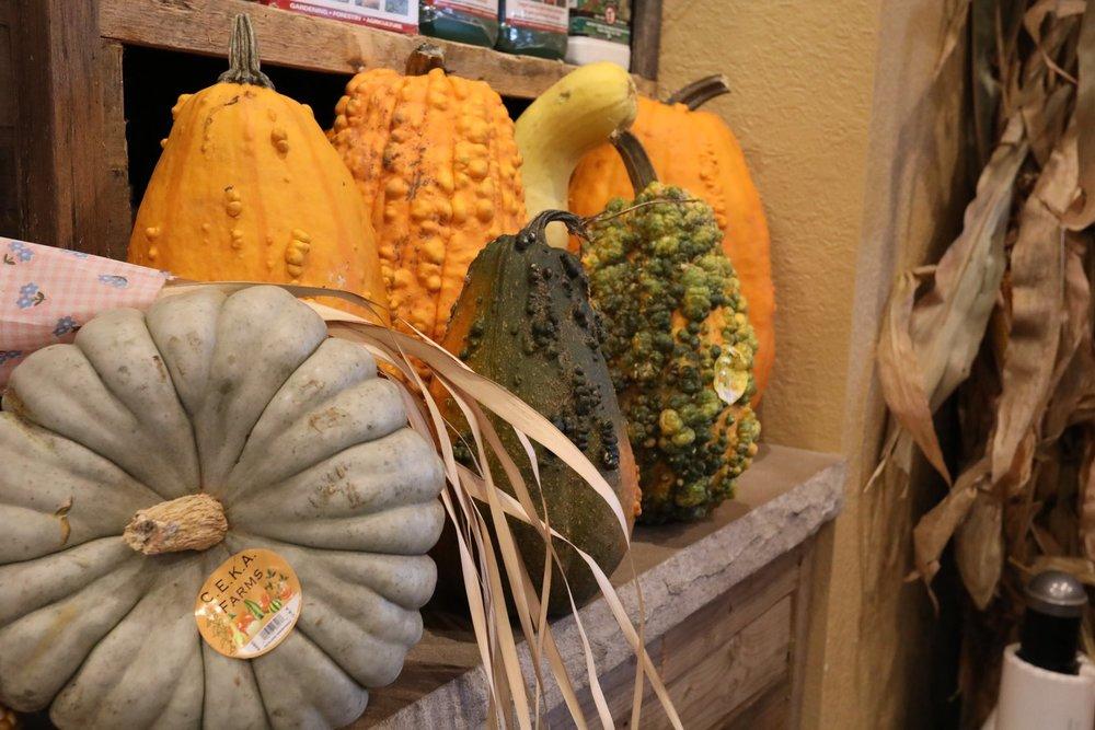 fall-decorations-2018-04.jpg