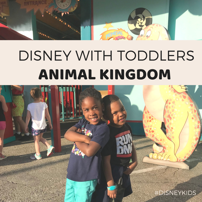 02-DISNEY WITH TODDLERS- ANIMAL KINGDOM.jpg