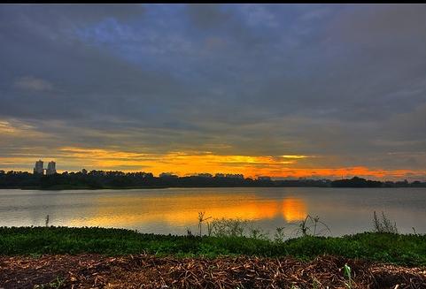 Picture: Rishi Kumar