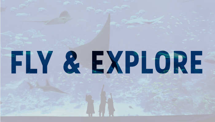 Fly-&-Explore-.jpg