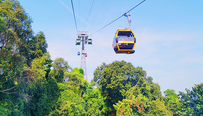 - Unlimited Cable Car Rides onboard Singapore Cable Car Sky Network (Mount Faber Line and Sentosa Line)