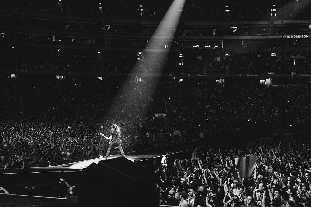 Foo_Fighters_Toronto_Born_Razed_3.jpg