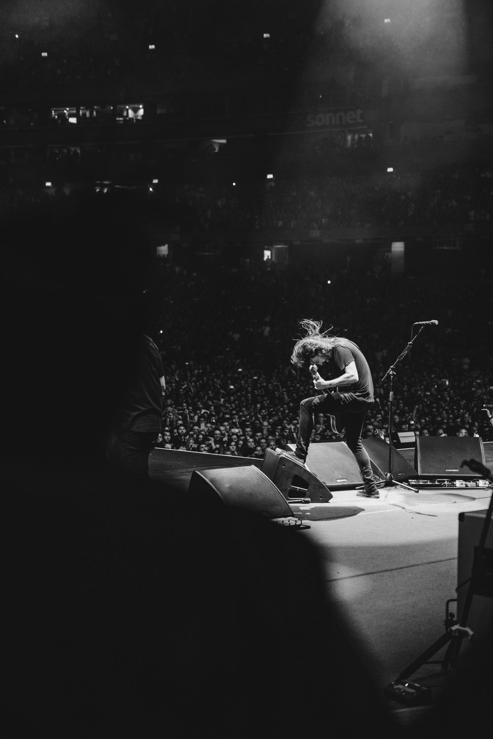 Foo_Fighters_Toronto_Born_Razed_10.jpg