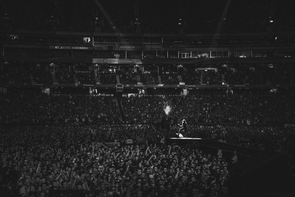 Foo_Fighters_Toronto_Born_Razed_19.jpg