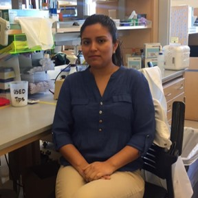Betsabel Chicana studies the interactions between the skeletal and immune systems.