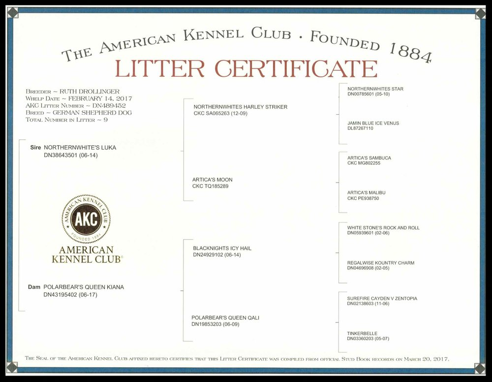 Kiana & Luka Litter Certificate March 2017.jpg