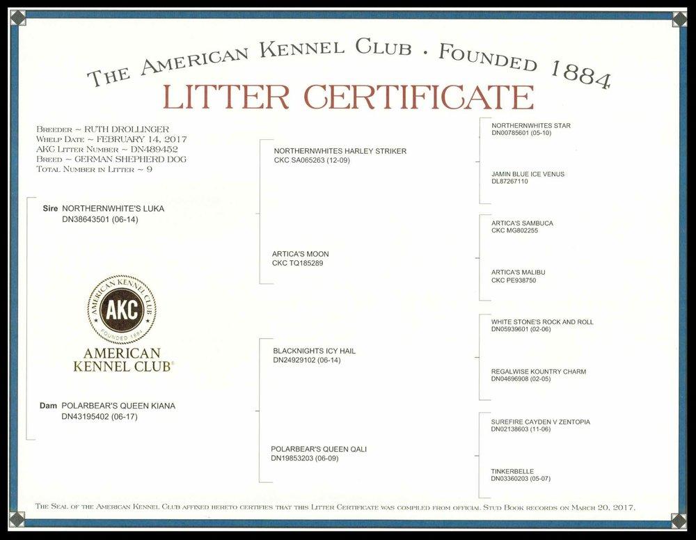 Kiana & Luka Litter Certificate March 2017.jpg