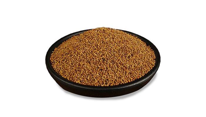 Dodder-Seed-image.jpg