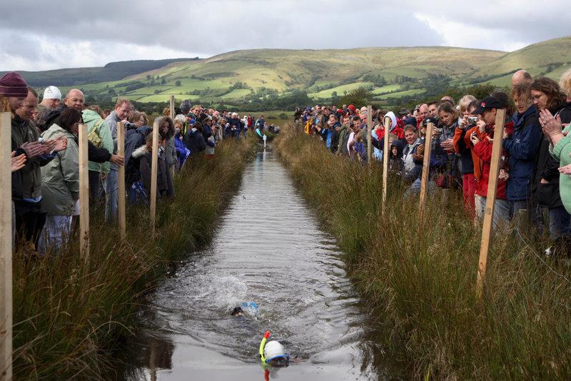Bog snorkeling - the quirkiest British sport?