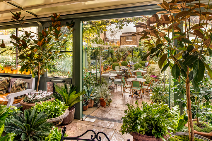 Sit amongst the flowers as you take your tea. Photo: The Ivy Chelsea Garden