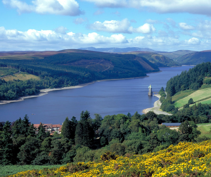 Look out over this breathtaking view at Lake Vyrnwy Hotel