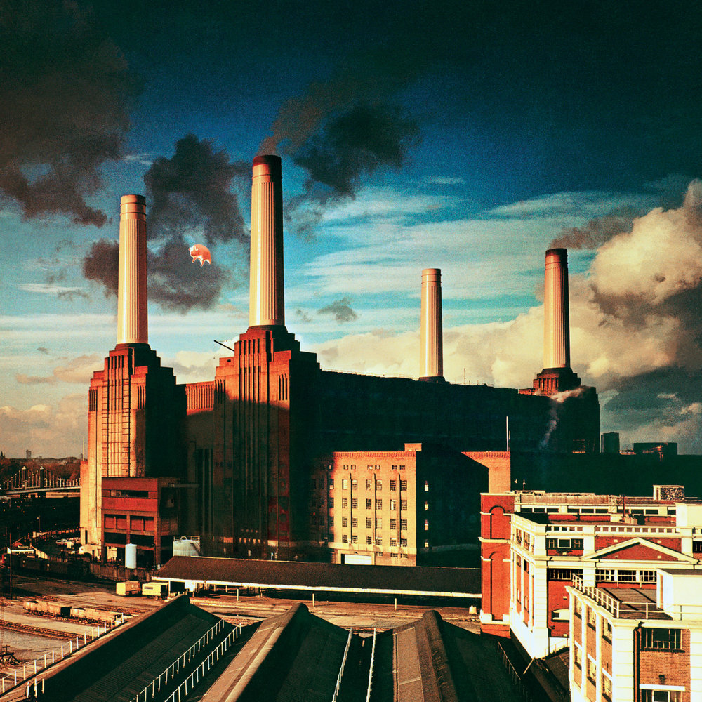 Animals. © Pink Floyd Music Ltd. Credit: Victoria and Albert Museum, London.