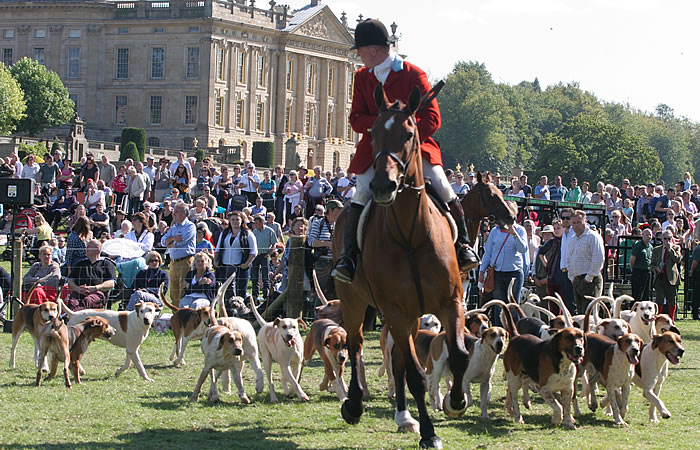 The Hound Parade at Chatsworth Country Fair. Photo from: Chatsworth Country Fair